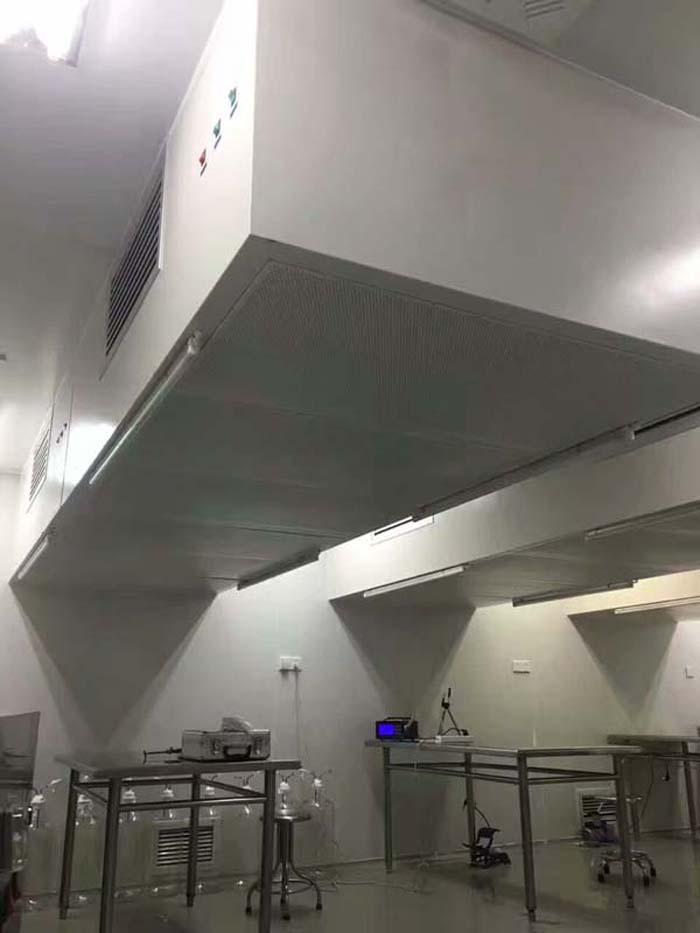层流罩有吊装式和支架安装式。送风面有孔板送风和均流膜送风两种方式。